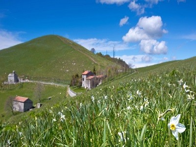 Bergamo: Seriana Valley by bike | high difficulty